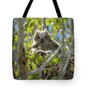 Great Horned Owl Chick Tote Bag