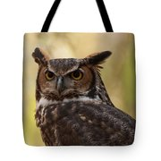 Great Horned Owl In A Tree 1 Tote Bag