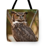 Great Horned Owl In A Tree 3 Tote Bag