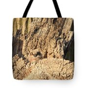 Great Horned Owlet Two Tote Bag