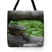 Great Look At A Komodo Monitor Lizard With Long Claws Tote Bag