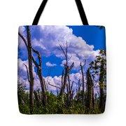 Great Meadow Tote Bag