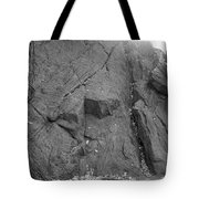 Great Mountains Of Central Park In Black And White Tote Bag