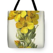 Great Mullein  Tote Bag