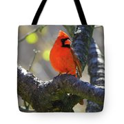 Great  Perch Male Northern Cardinal Tote Bag