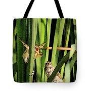Great Reed Warbler Tote Bag