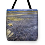 Great Salt Lake Basin Tote Bag