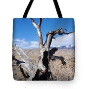Great Sand Dunes National Park Fallen Tree Portrait Tote Bag