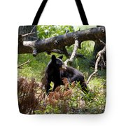 Great Smoky Mountain Bear Tote Bag