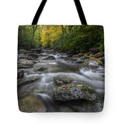 Great Smoky Mountains. Tote Bag by Itai Minovitz