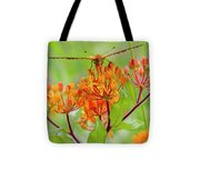 Great Spangled Fritillary II Tote Bag