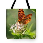 Great Spangled Fritillary On Bee Balm Tote Bag