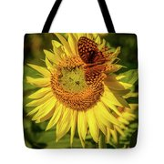 Great Spangled Fritillary On Sunflower Tote Bag