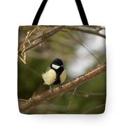 Great Tit Male 2 Tote Bag