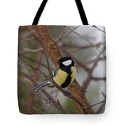 Great Tit Male Tote Bag