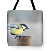 Great Tit On The Tube  Tote Bag