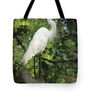 Great White Egret In Spring Tote Bag