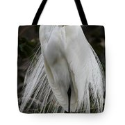 Great White Egret Windblown Tote Bag
