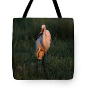 Great White Egret With Armored Catfish Tote Bag