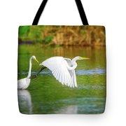 Great White Egrets Tote Bag