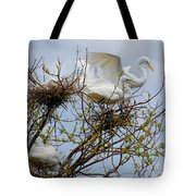 Great Egrets, Nest Building Tote Bag