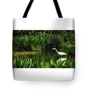 Great White Heron Green Cay Wetlands Tote Bag