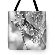 Great Wings  Black And White Dragonfly Tote Bag