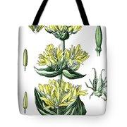 great yellow gentian, Gentiana lutea Tote Bag