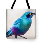 Greater Blue-eared Starling Tote Bag