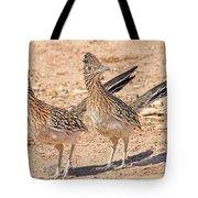 Greater Roadrunner Bird Tote Bag