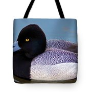 Greater Scaup  Tote Bag