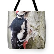 Greater Spotted Woodpecker Tote Bag
