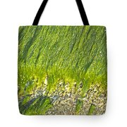 Green Algae On Rock Tote Bag
