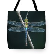 Green And Blue Dragonfly Tote Bag