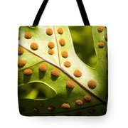 Green And Orange Leaf Tote Bag