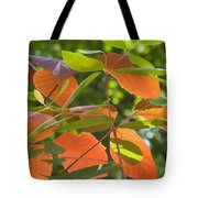 Green And Orange Leaves Tote Bag