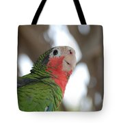Green And Red Conure With Ruffled Feathers Tote Bag