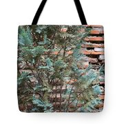 Green And Red - Cypress Branches Over Antique Roman Brick Wall Tote Bag