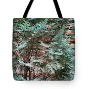 Green And Red - Slender Cypress Branches Over Rough Roman Brick Wall Tote Bag