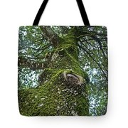 Green Arms Tote Bag