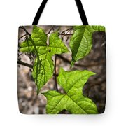 Green Arrowheads Tote Bag