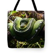 Green Boa Tote Bag