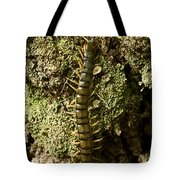 Green Centipede Tote Bag