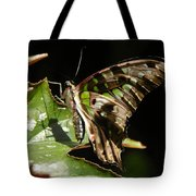 Green Checkered Skipper Tote Bag