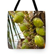 Green Coconut Tote Bag