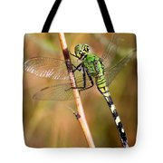 Green Dragonfly Closeup Tote Bag