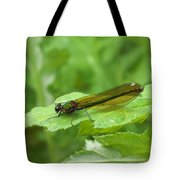 Green Dragonfly On Leaf Tote Bag