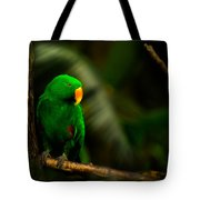 Green Eclectus Parrot Male Tote Bag