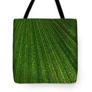 Green Fan - Radiating Lines And Scattered Polka-dots Tote Bag