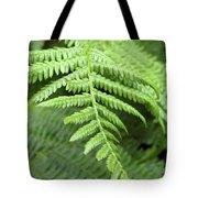 Green Fern 2 Tote Bag